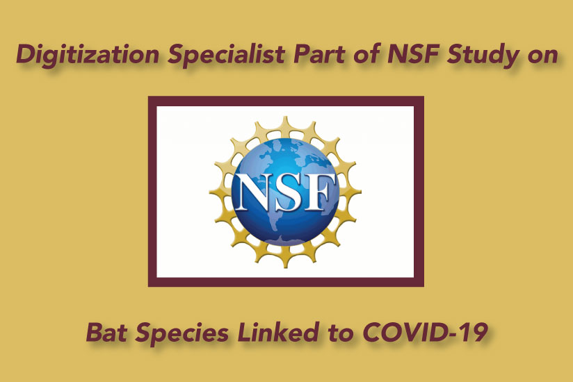 COVID-19 grant from NSF